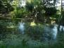 Park latem